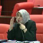 AKP Grup Başkanvekili Özlem Zengin: Bu ülkede AK Parti gelene kadar kadın kelimesi yoktu