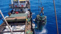 Büyük Pasifik Çöp Gemisi Denizin Altından 103 Ton Plastik Çıkardı