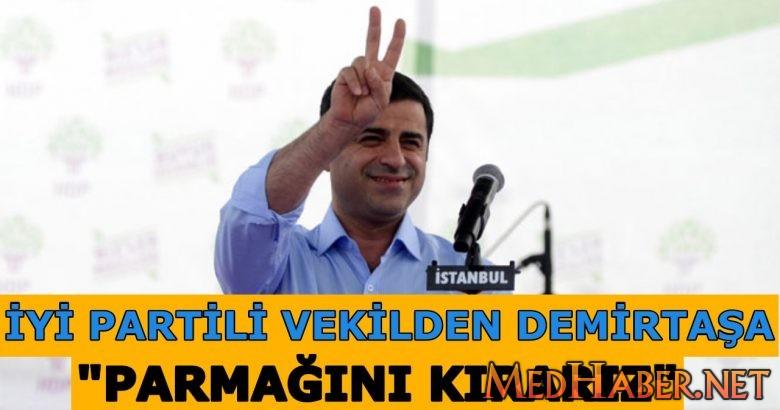 İYİ Partili Yavuz Ağıralioğlu'ndan Demirtaş'a cevap: Parmağını kırarız!