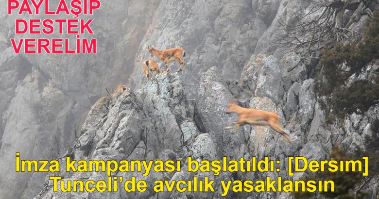 İmza kampanyası başlatıldı: Tunceli'de avcılık yasaklansın