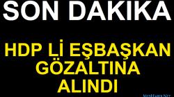 HDP Li Eş Başkan Ve 2 Siyasetçiye Gözaltı