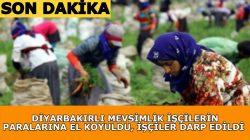 Diyarbakırlı mevsimlik tarım işçilerinin ücretlerine el koyuldu, işçiler darp edildi