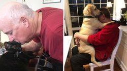 'Bu Evde Hayvan İstemiyorum' Diyen Babaların Son Halleri Görenleri Şaşırtıyor