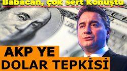 Ali Bababacan'dan AKP'ye 'dolar' tepkisi