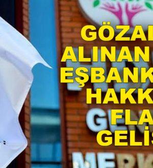 Gözaltına alınan HDP'li eşbaşkanlar hakkında gelişme