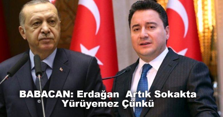 Babacan: Erdoğan'ın artık sokakta yürümesi kolay değil