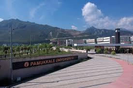 Pamukkale Üniversitesi tepki çeken soruları iptal etti