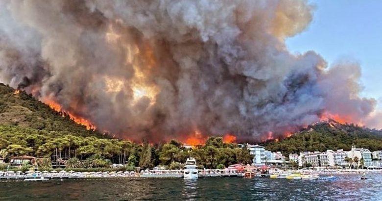 Bülbül: Madımak'ı yakanlar ormanları yakıyor